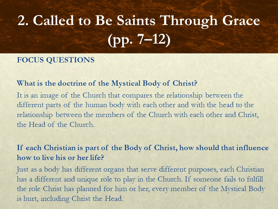 FOCUS QUESTIONS What is the doctrine of the Mystical Body of Christ? It is an image of the Church that compares the relationship between the different