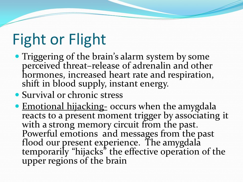 Fight or Flight Triggering of the brain's alarm system by some perceived threat–release of adrenalin and other hormones, increased heart rate and resp