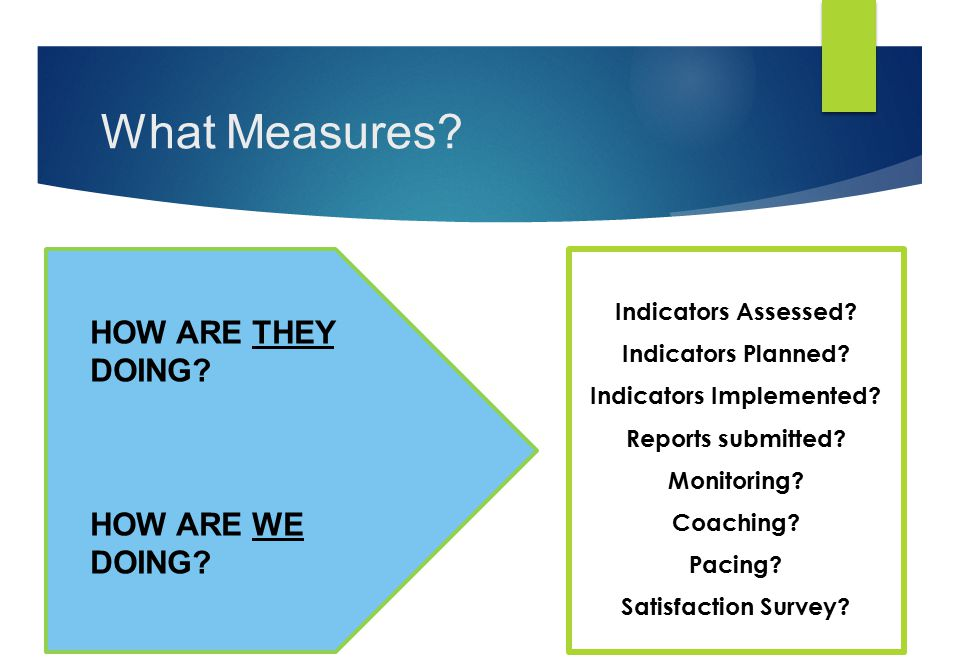 What Measures? Indicators Assessed? Indicators Planned? Indicators Implemented? Reports submitted? Monitoring? Coaching? Pacing? Satisfaction Survey?