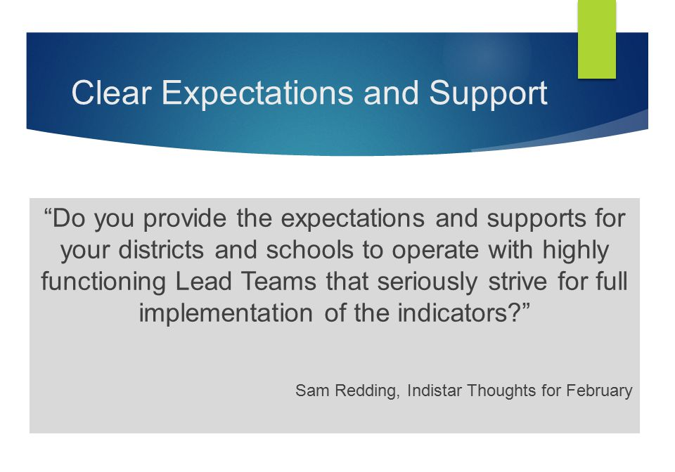 "Clear Expectations and Support ""Do you provide the expectations and supports for your districts and schools to operate with highly functioning Lead Te"