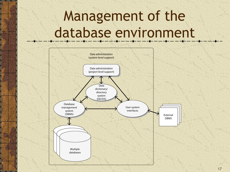 17 Management of the database environment