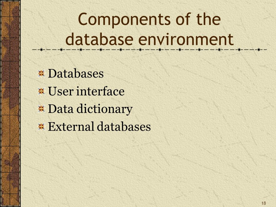 18 Components of the database environment Databases User interface Data dictionary External databases
