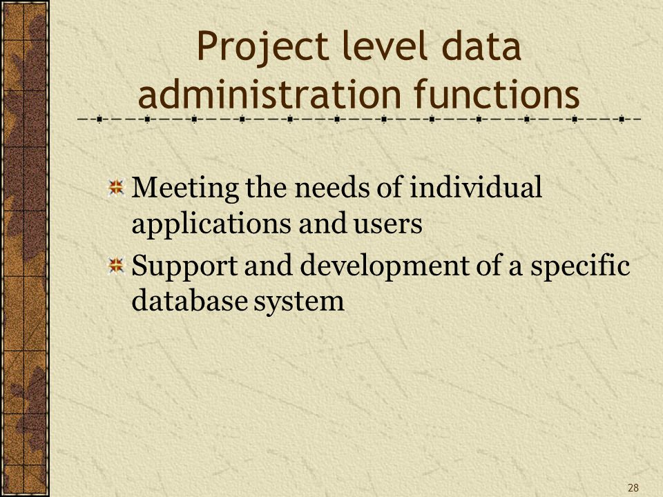 28 Project level data administration functions Meeting the needs of individual applications and users Support and development of a specific database system