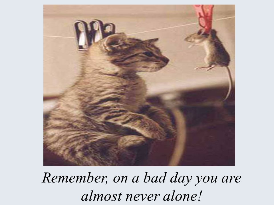 Remember, on a bad day you are almost never alone!