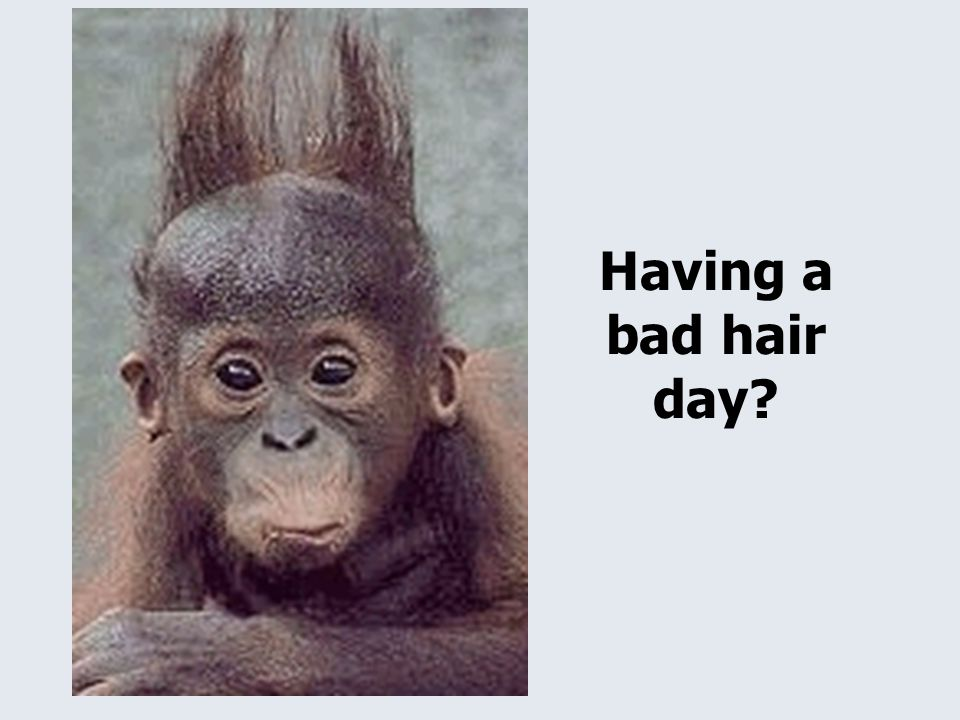 Having a bad hair day