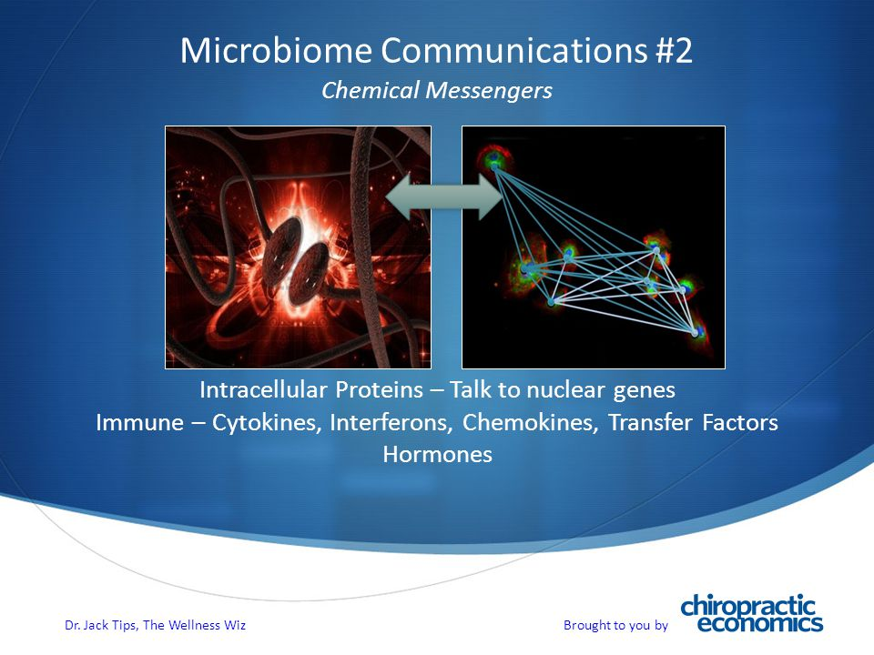 Microbiome Communications #2 Chemical Messengers Intracellular Proteins – Talk to nuclear genes Immune – Cytokines, Interferons, Chemokines, Transfer Factors Hormones Dr.