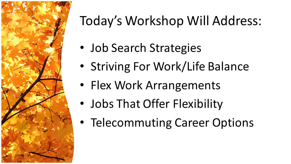 Today's Workshop Will Address: Job Search Strategies Striving For Work/Life Balance Flex Work Arrangements Jobs That Offer Flexibility Telecommuting Career Options