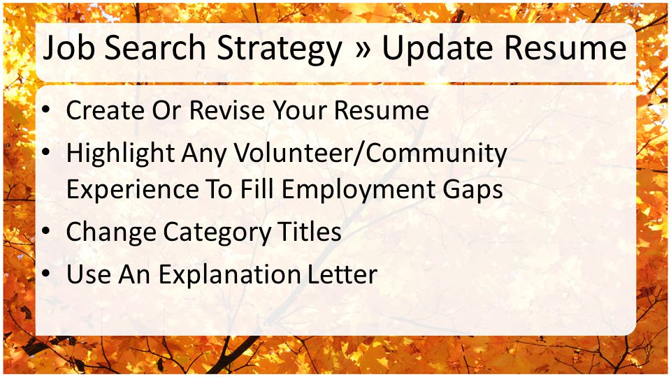 Job Search Strategy » Update Resume Create Or Revise Your Resume Highlight Any Volunteer/Community Experience To Fill Employment Gaps Change Category