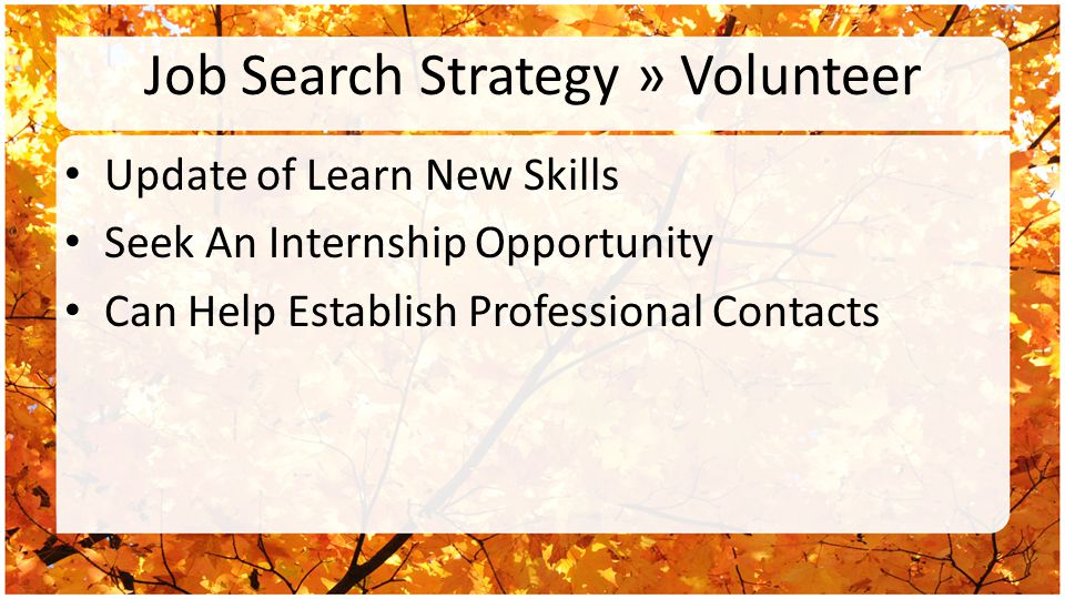 Job Search Strategy » Volunteer Update of Learn New Skills Seek An Internship Opportunity Can Help Establish Professional Contacts