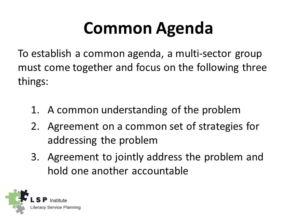 Common Agenda To establish a common agenda, a multi-sector group must come together and focus on the following three things: 1.A common understanding of the problem 2.Agreement on a common set of strategies for addressing the problem 3.Agreement to jointly address the problem and hold one another accountable