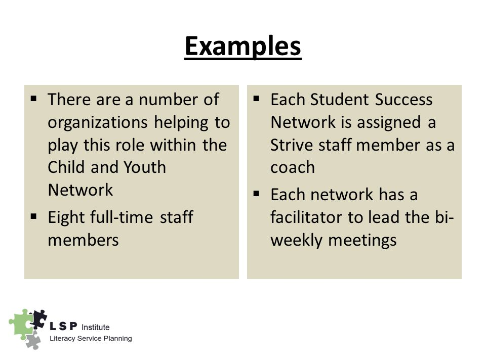 Examples  There are a number of organizations helping to play this role within the Child and Youth Network  Eight full-time staff members  Each Student Success Network is assigned a Strive staff member as a coach  Each network has a facilitator to lead the bi- weekly meetings