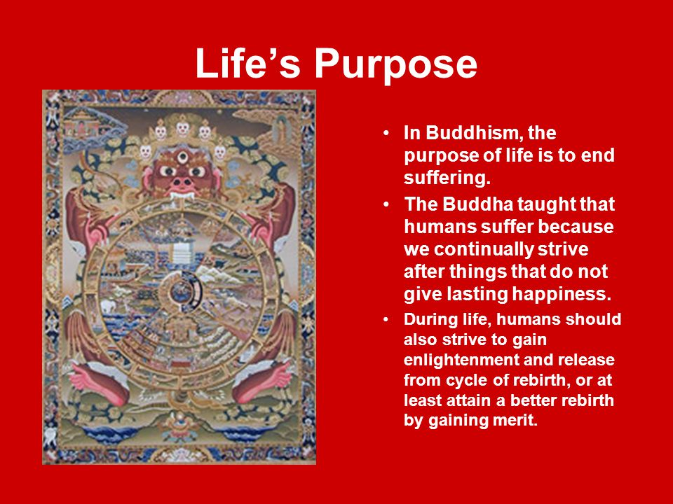 Life's Purpose In Buddhism, the purpose of life is to end suffering. The Buddha taught that humans suffer because we continually strive after things t