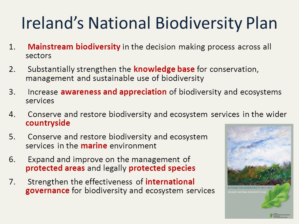Ireland's National Biodiversity Plan 1.
