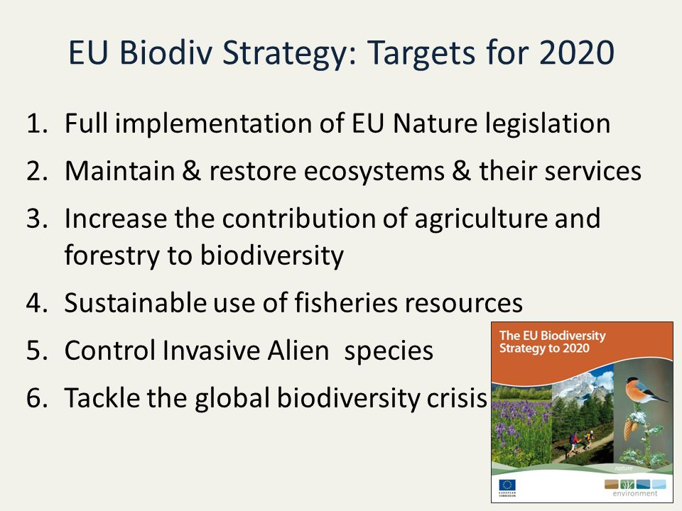 EU Biodiv Strategy: Targets for 2020 1.Full implementation of EU Nature legislation 2.Maintain & restore ecosystems & their services 3.Increase the contribution of agriculture and forestry to biodiversity 4.Sustainable use of fisheries resources 5.Control Invasive Alien species 6.Tackle the global biodiversity crisis