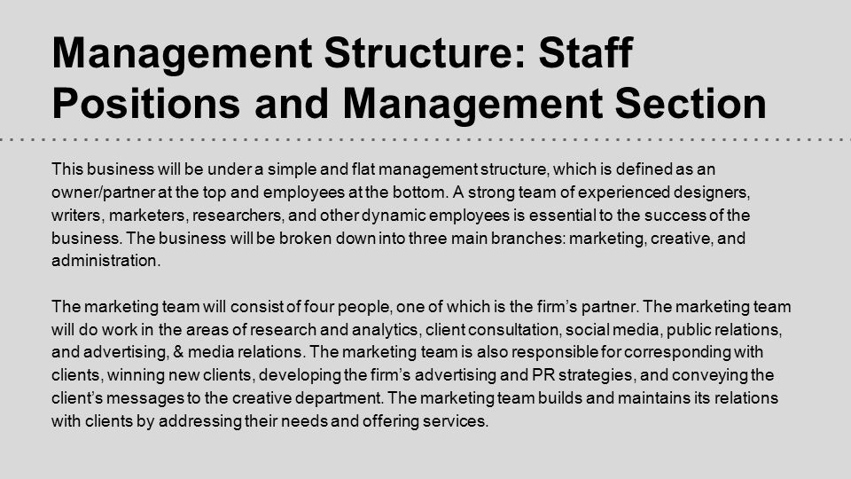 Management Structure: Staff Positions and Management Section This business will be under a simple and flat management structure, which is defined as a