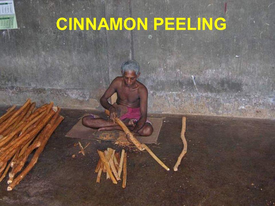 CINNAMON PEELING