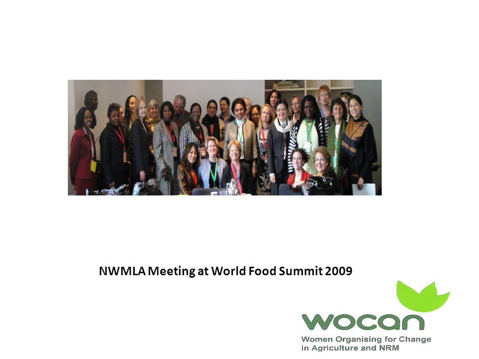 NWMLA Meeting at World Food Summit 2009