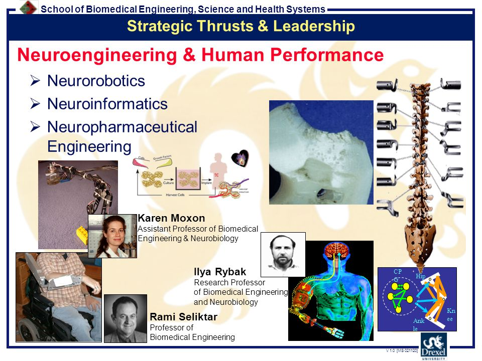 School of Biomedical Engineering, Science and Health Systems V 1.0 [MS 021120] Neuroengineering & Human Performance  Neurorobotics  Neuroinformatics  Neuropharmaceutical Engineering Karen Moxon Assistant Professor of Biomedical Engineering & Neurobiology Ank le Hip Kn ee CP G Rami Seliktar Professor of Biomedical Engineering Strategic Thrusts & Leadership Ilya Rybak Research Professor of Biomedical Engineering and Neurobiology
