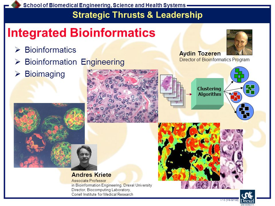 School of Biomedical Engineering, Science and Health Systems V 1.0 [MS 021120] Integrated Bioinformatics  Bioinformatics  Bioinformation Engineering  Bioimaging Strategic Thrusts & Leadership Aydin Tozeren Director of Bioinformatics Program Clustering Algorithm Andres Kriete Associate Professor in Bioinformation Engineering, Drexel University Director, Biocomputing Laboratory, Coriell Institute for Medical Research