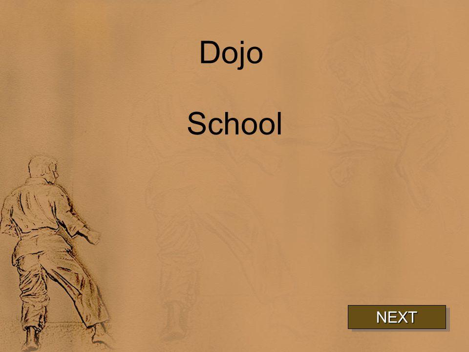 Dojo School NEXT