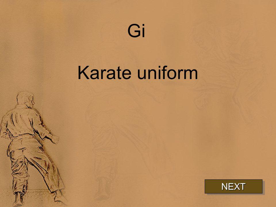 Gi Karate uniform NEXT