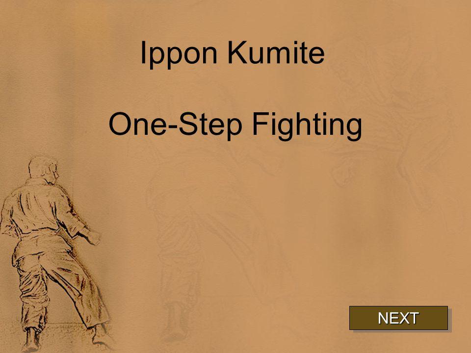 Ippon Kumite One-Step Fighting NEXT