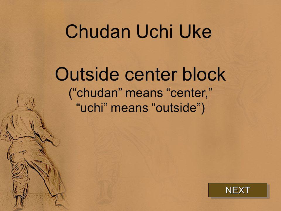 Chudan Uchi Uke Outside center block ( chudan means center, uchi means outside ) NEXT