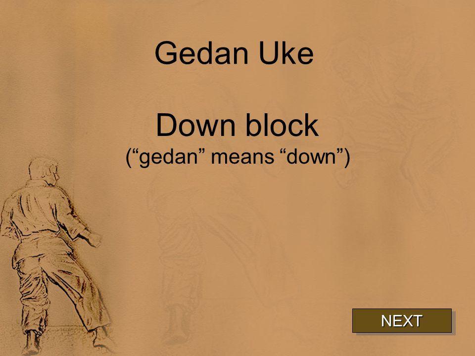 Gedan Uke Down block ( gedan means down ) NEXT