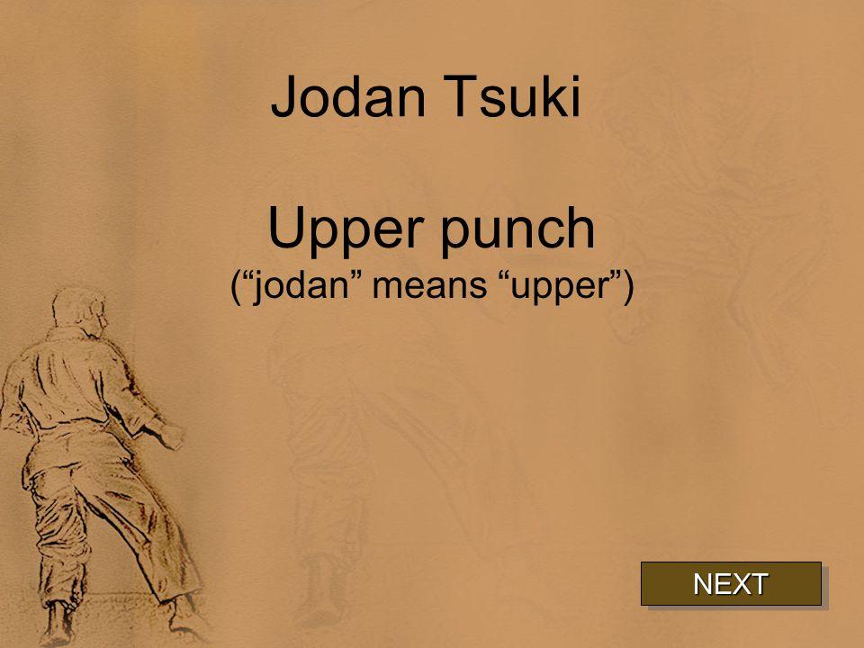 Jodan Tsuki Upper punch ( jodan means upper ) NEXT