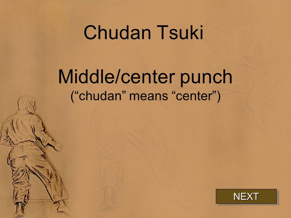 Chudan Tsuki Middle/center punch ( chudan means center ) NEXT