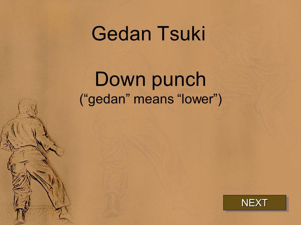 Gedan Tsuki Down punch ( gedan means lower ) NEXT