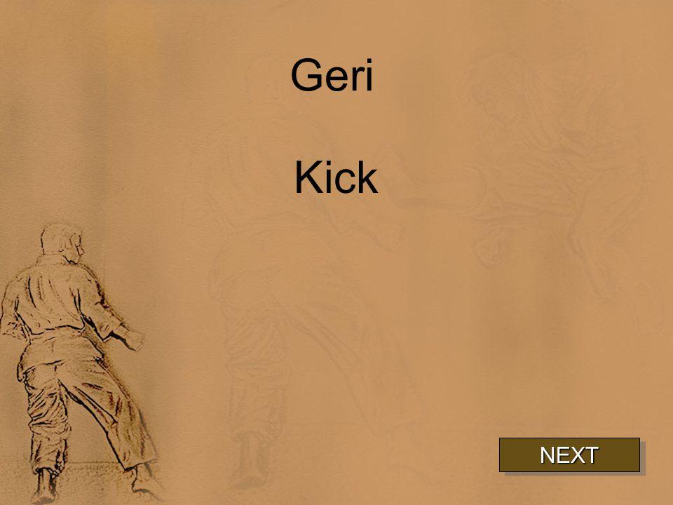 Geri Kick NEXT