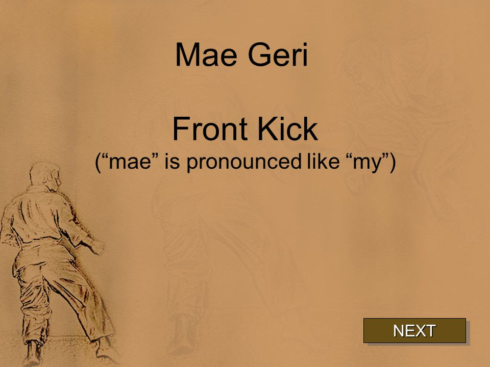 Mae Geri Front Kick ( mae is pronounced like my ) NEXT