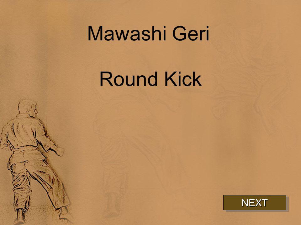 Mawashi Geri Round Kick NEXT