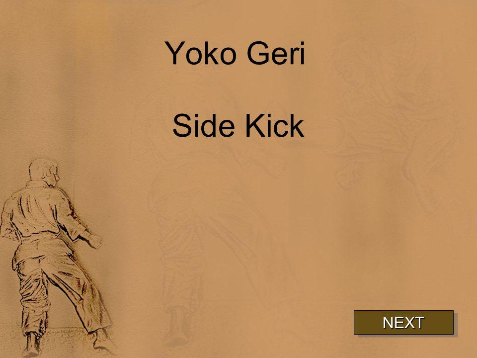 Yoko Geri Side Kick NEXT