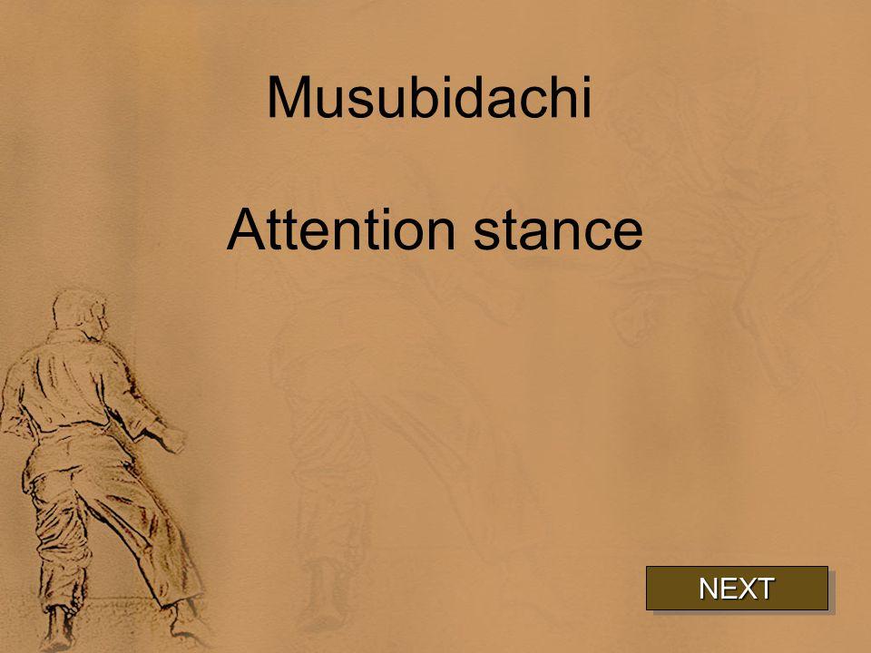 Musubidachi Attention stance NEXT