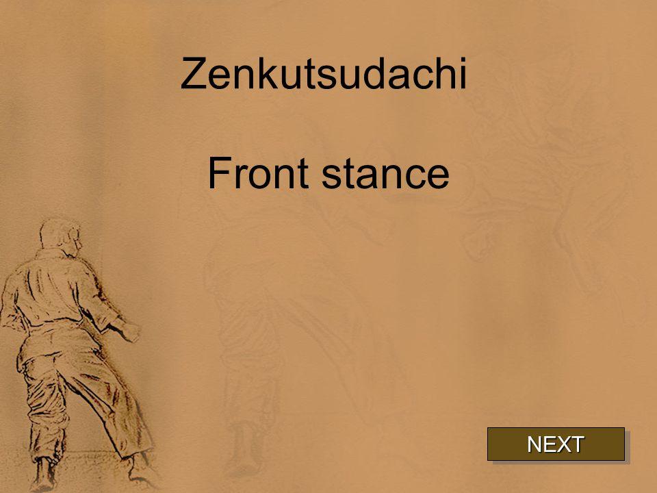 Zenkutsudachi Front stance NEXT