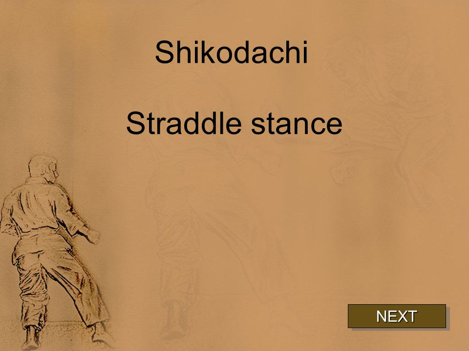 Shikodachi Straddle stance NEXTNEXT