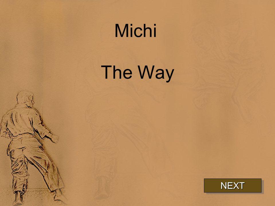 Michi The Way NEXT