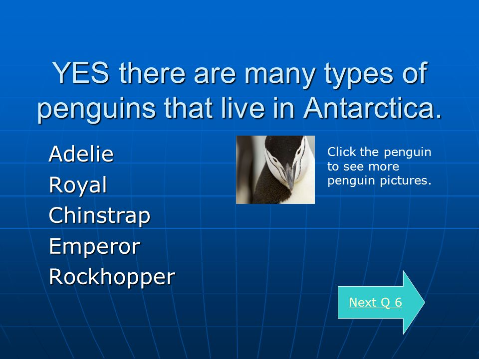 YES there are many types of penguins that live in Antarctica.