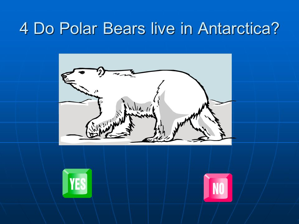 Well done.Polar bears do not live in Antarctica (the South Pole).