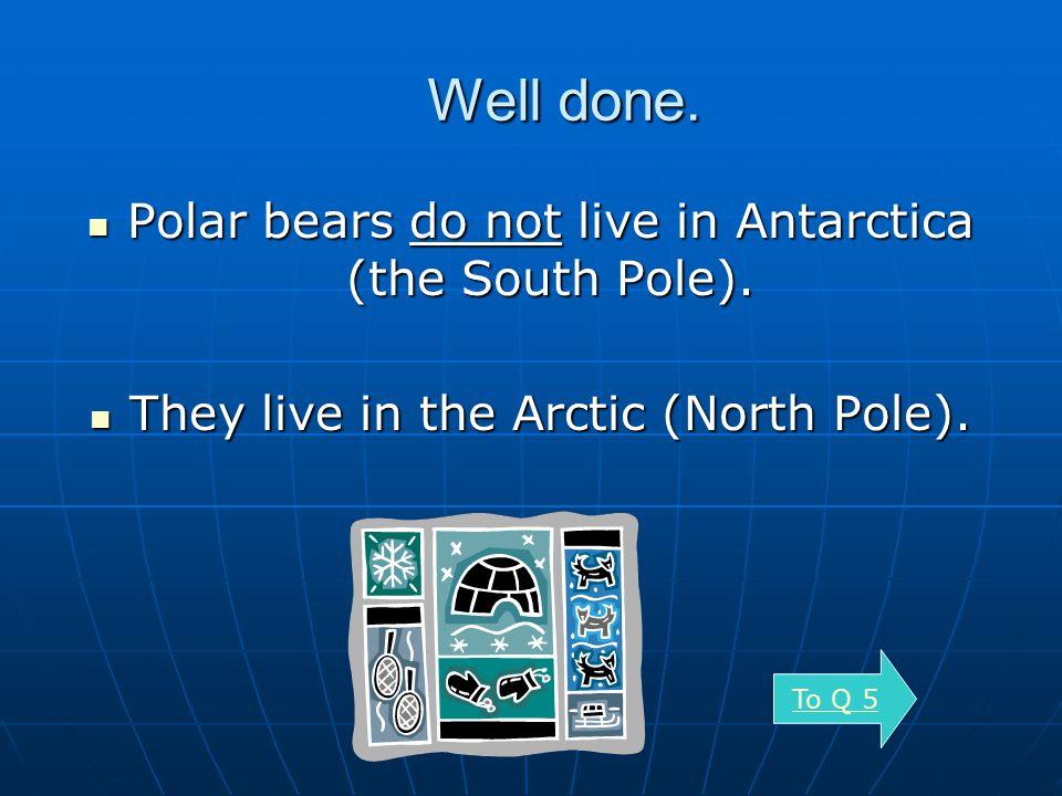 5 Do Penguins live in Antarctica?