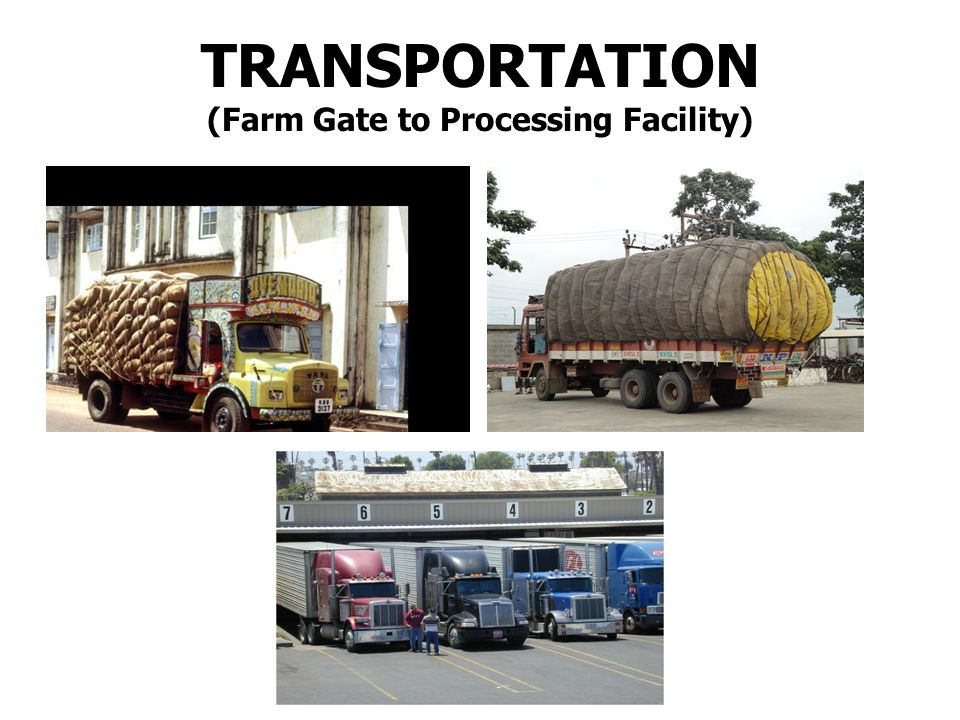 To protect harvested material from potential sources of contamination during transportation To protect harvested material from damage likely to render food unsuitable for consumption.