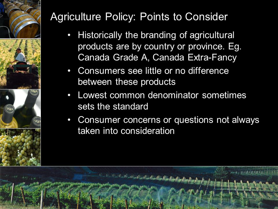Agriculture Policy: Points to Consider Historically the branding of agricultural products are by country or province.
