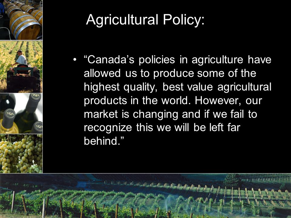 Agricultural Policy: Canada's policies in agriculture have allowed us to produce some of the highest quality, best value agricultural products in the world.