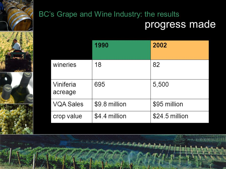 BC's Grape and Wine Industry: the results progress made 19902002 wineries1882 Viniferia acreage 6955,500 VQA Sales$9.8 million$95 million crop value$4.4 million$24.5 million