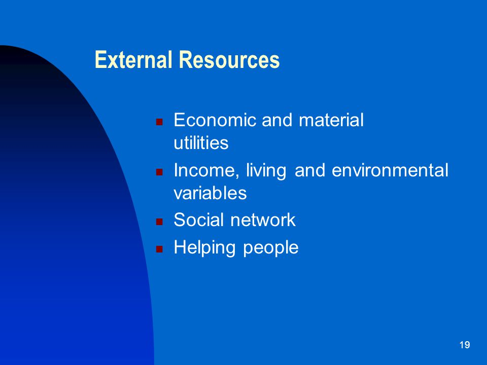 19 External Resources Economic and material utilities Income, living and environmental variables Social network Helping people