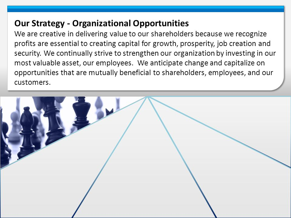 Our Strategy - Organizational Opportunities We are creative in delivering value to our shareholders because we recognize profits are essential to crea