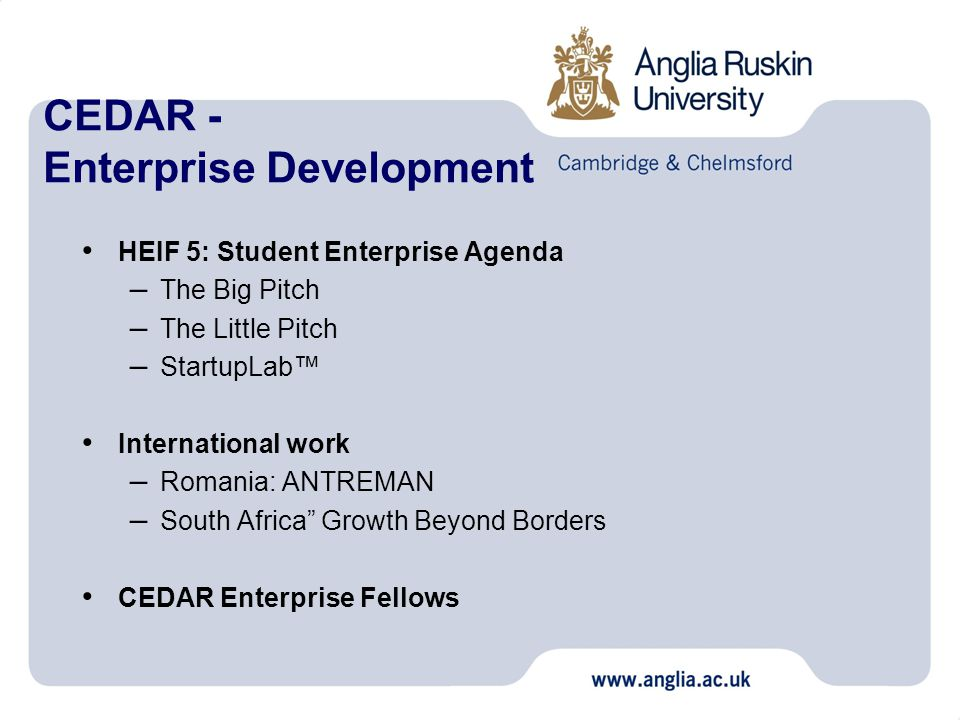 CEDAR - Enterprise Development HEIF 5: Student Enterprise Agenda – The Big Pitch – The Little Pitch – StartupLab™ International work – Romania: ANTREMAN – South Africa Growth Beyond Borders CEDAR Enterprise Fellows