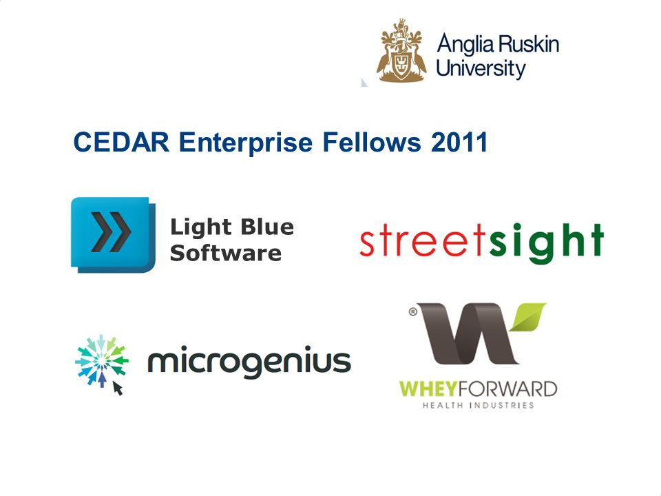 Light Blue Software CEDAR Enterprise Fellows 2011